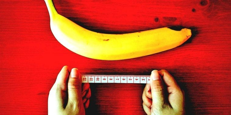 pene artificiale acquista come definire un pene sano